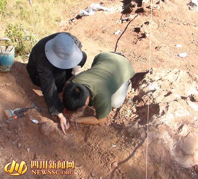 2014年12月中旬,在会理县南阁乡一山顶现场,专家正在对埋藏的恐龙化石进行清理 ,会理县文管所供图