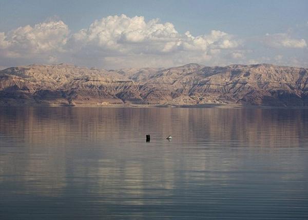 自1950年代至今,死海的水位估计急跌了40米。