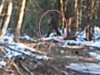 """美国12岁男童声称拍到大脚怪踪影 """"怪兽猎人""""赶往实地考察"""