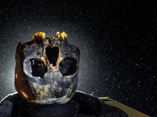 这个少女颅骨在墨西哥的水下洞穴被发现后,为新世界最早的居民赋予了具体的面貌。为了维持牙齿完好,颅骨被上下颠倒地放置。 Photograph by Paul Ni