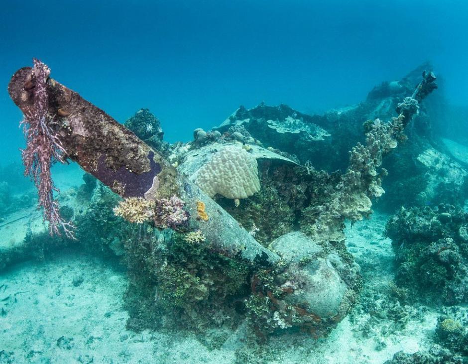 """""""艾米丽""""号水上飞船残骸中损坏的螺旋桨和发动机"""