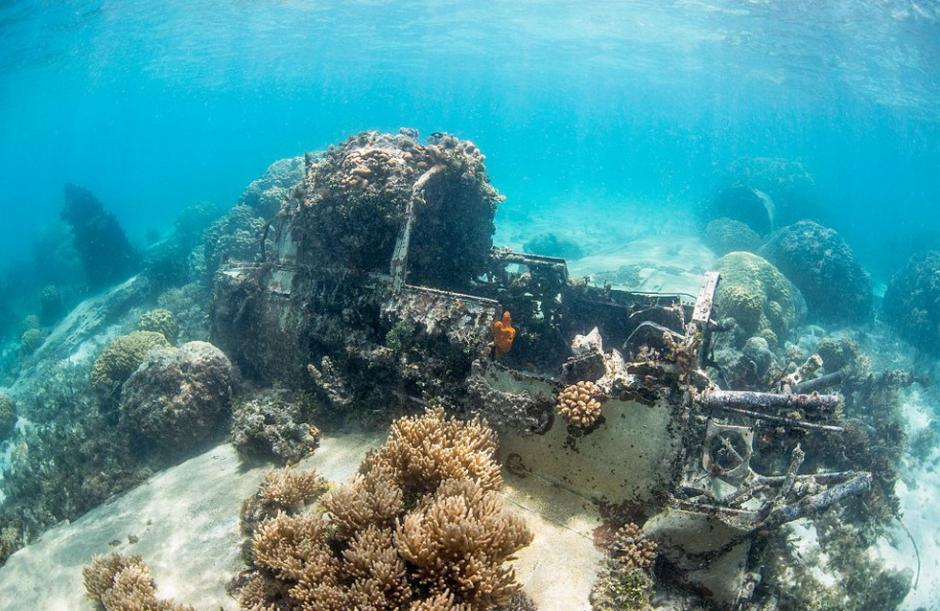 二战期间,日军曾利用特鲁克泻湖群岛作为军事基地,对抗驻扎在新几内亚和所罗门群岛上的盟军。