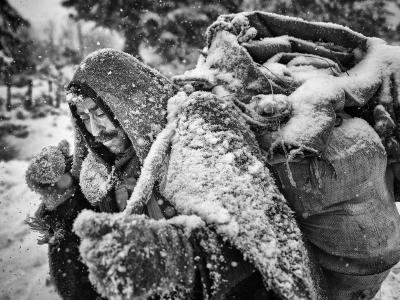 伊朗北部风雪牧羊人
