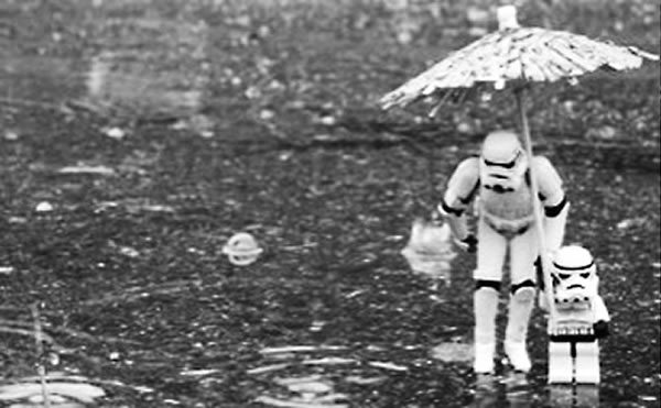 一种奇怪效应可以解释为何雨闻起来如此令人身心愉悦