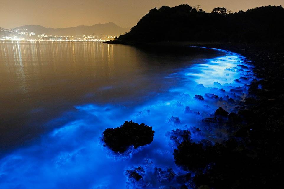 中国香港海岸出现蓝色荧光海滩