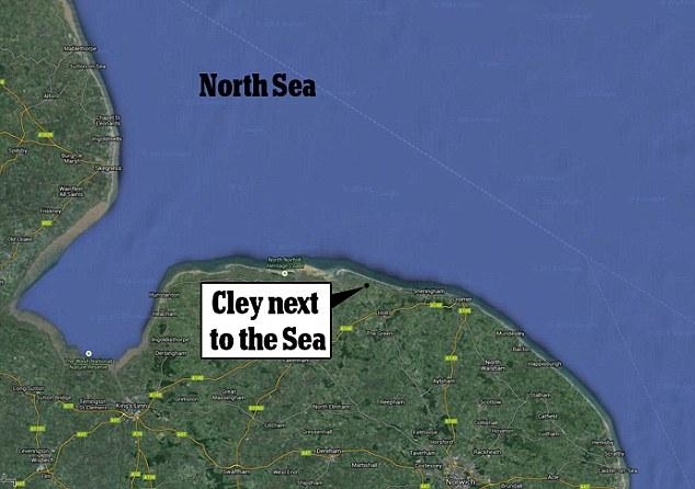 研究人员在英国北海海域潜水发现1万年前的史前森林