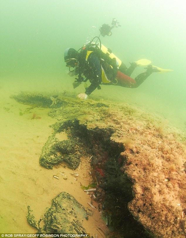 沃森在英国诺福克郡Cley next the Sea近海300米处潜水时,发现这座失落的森林。沃森在北海下发现完整的橡树,而且它们的树枝有8米长。专家认为,它们