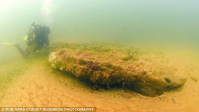 在北海潜水约有16年的沃森指出,这些橡树被认为构成一座几千英亩巨大森林的一部分。