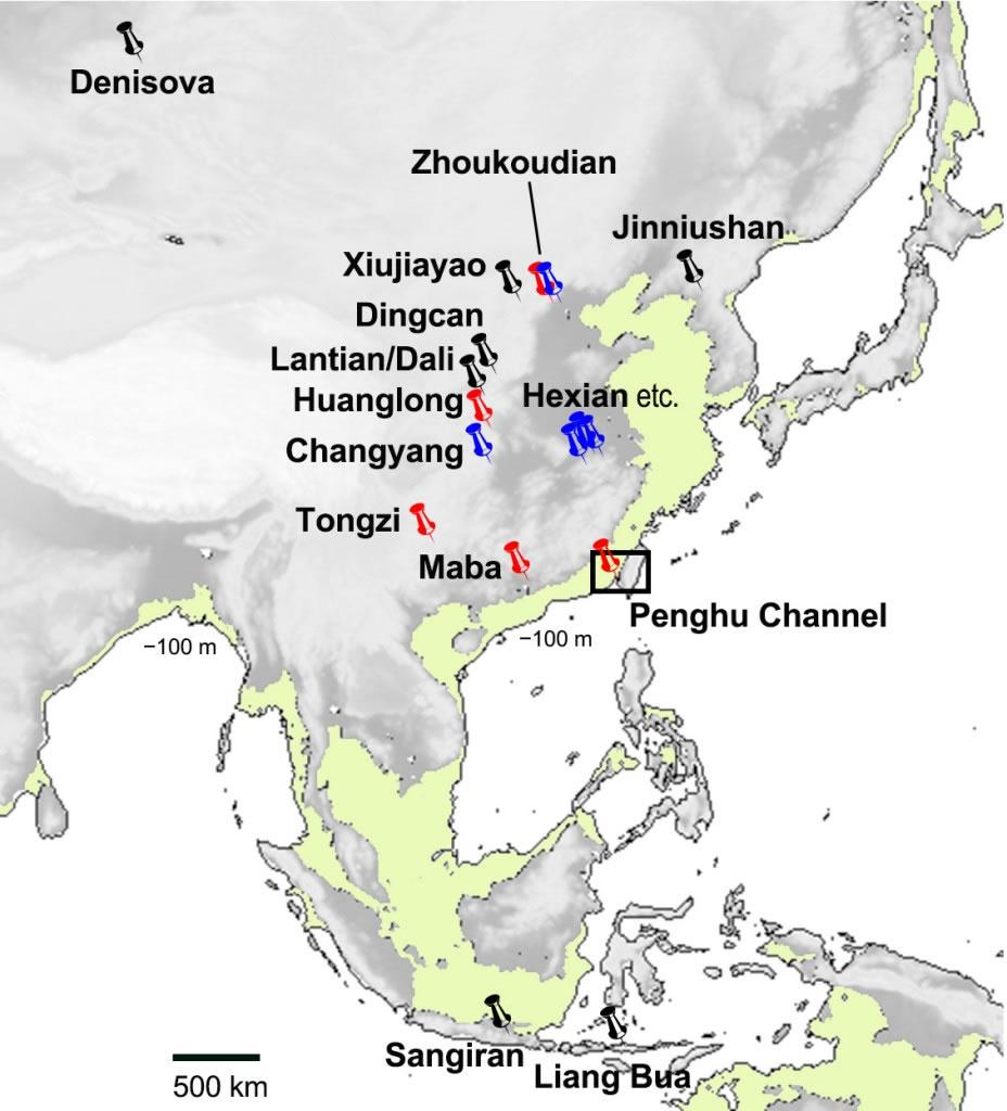 直立人在亚洲的分布。图片来源:国立自然科学博物馆。
