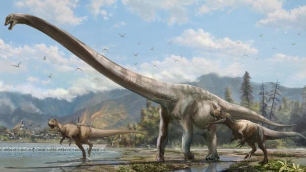 一种脖子长度占体长一半的长颈龙新物种在中国境内被发现。