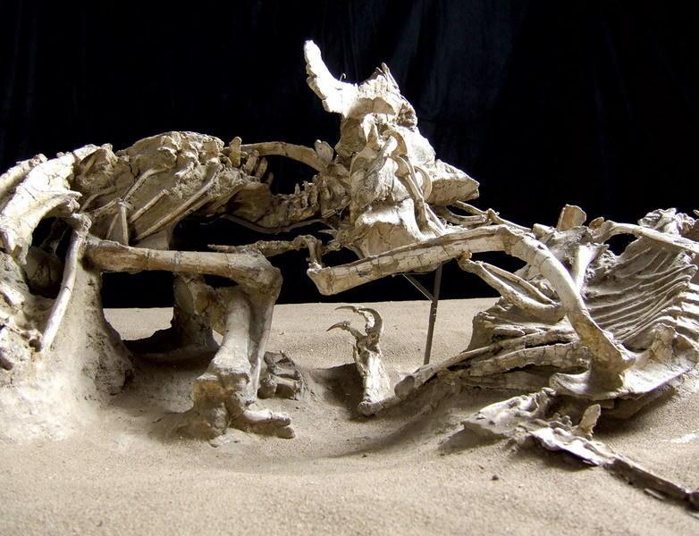 恐龙死亡之战