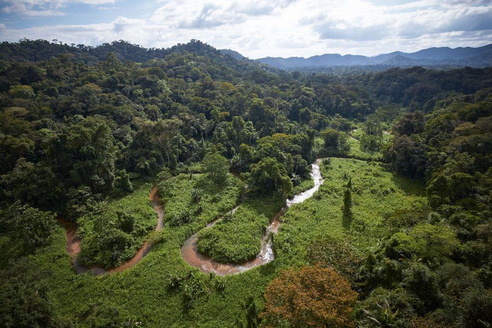 探险队在洪都拉斯雨林中发现拥有神秘文化
