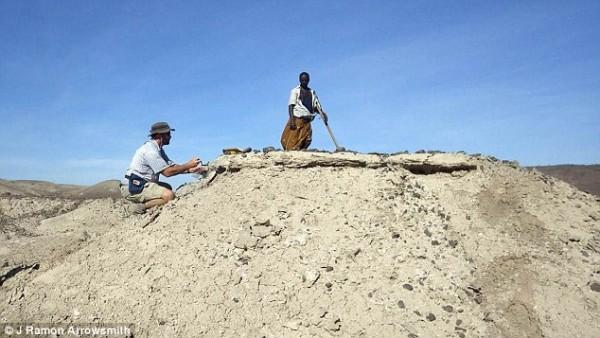 古人类学家在发掘现场