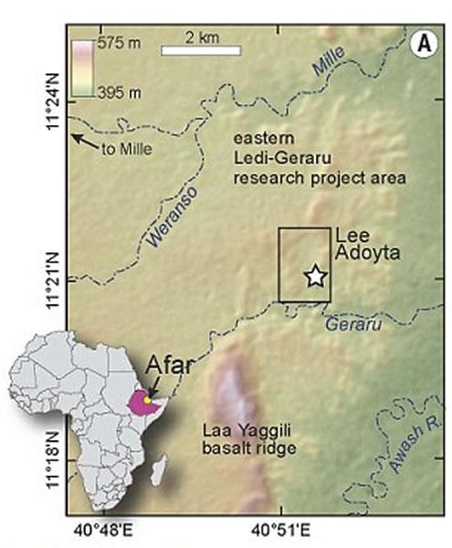 这一下颚骨化石最初是由埃塞俄比亚研究和文化遗产保护机构的一名名为沙拉丘?塞尤姆(Chalachew Seyoum)的学生在2013年1月发现