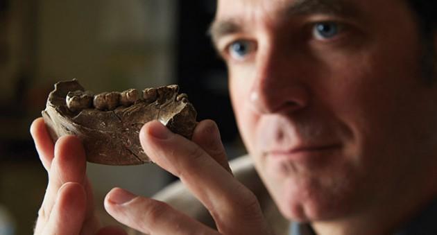 埃塞俄比亚280万年前的人类破损颚骨化石将已知人类起源时间前推50万年