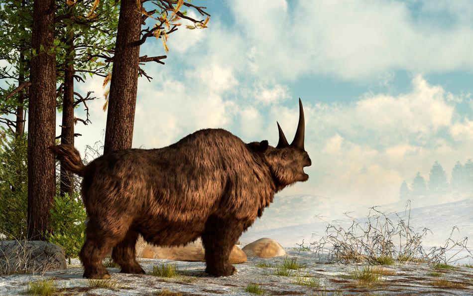 科学家并不清楚它们灭绝的真实原因,只猜测可能是由于早期人类过度捕杀导致灭绝的,就像猛犸一样;另外,冰河时期冰川消退和疾病扩散也是导致它们灭绝的因素。