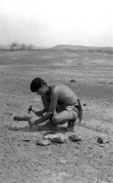 詹姆斯·G·米德1964年在东非肯尼亚发现突吻鲸化石