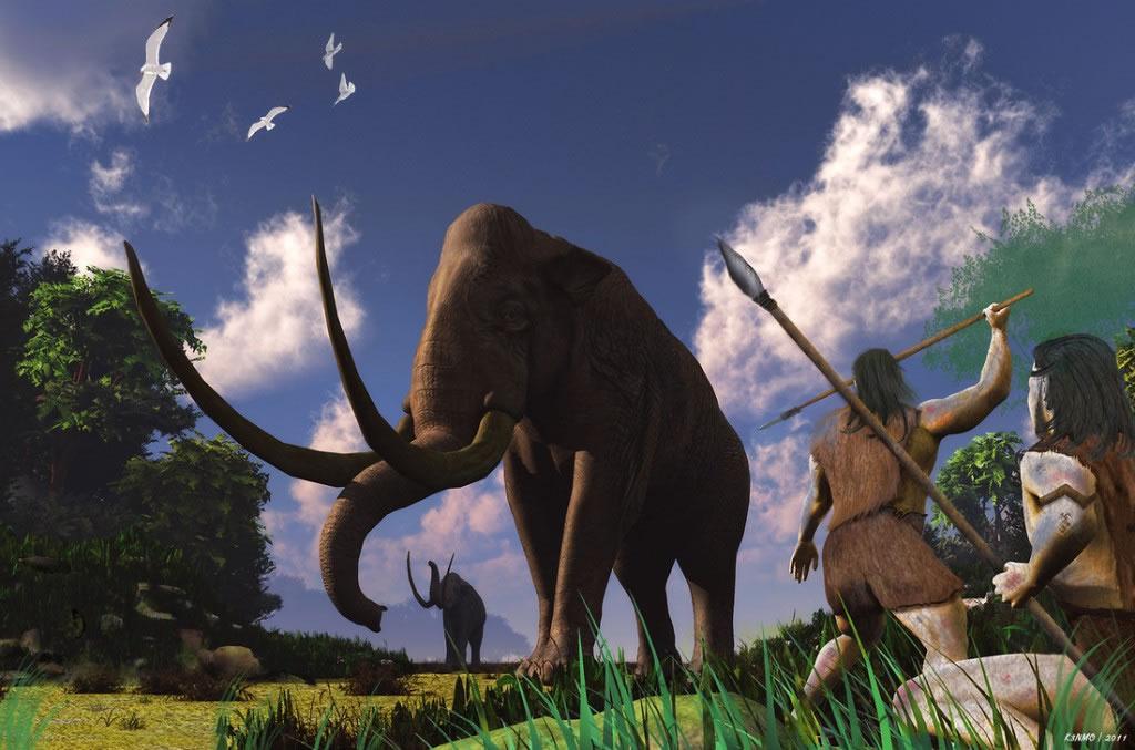 100万年前穴居人利用石器工具捕猎大象食