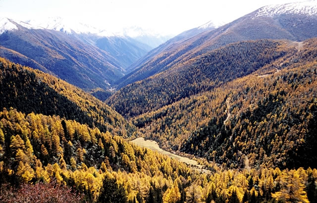香格里拉自然景观