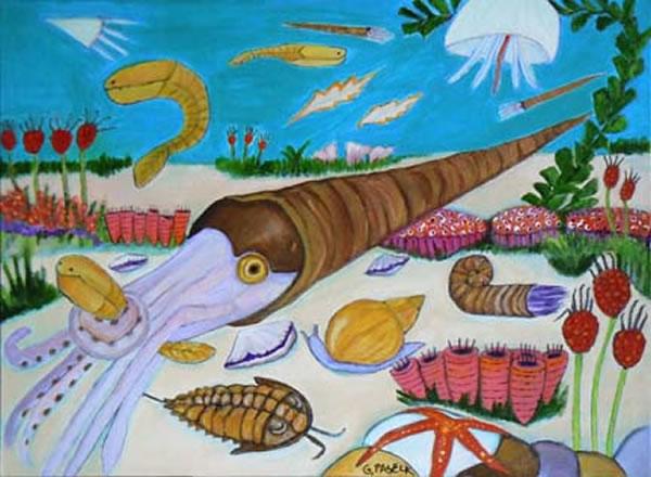 一项研究使用了一个关于寒武纪化石的数据集合,它提出寒武纪生物多样性的显著增加很可能是受到了局部尺度上的捕食增加以及生态位收缩控制的,这可能驱动了分类学的变化,还