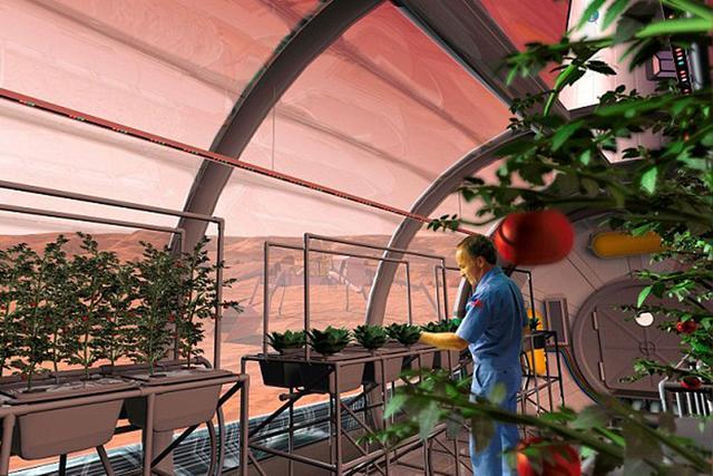 如果我们在太空中种植植物获得了成功,就可以在火星和月球基地上大规模拓展