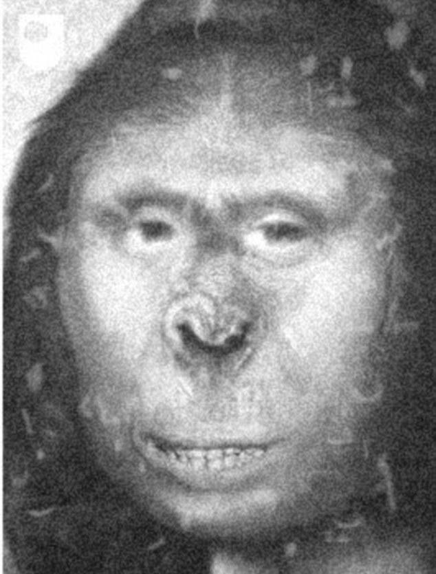 牛津大学教授认为,雪人的答案应该就在19世纪俄国猿女扎娜身上。