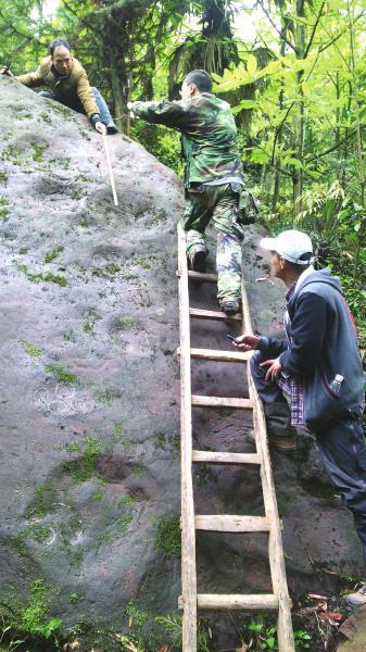 专家准备对恐龙足迹进行拓片研究