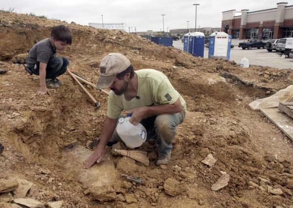 美国得克萨斯州4岁小男孩发现1亿年前恐龙化石