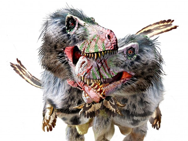 """霸王龙的表亲""""惧龙""""会吃自己的同类"""