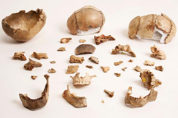 英国萨默塞特郡洞穴发现人类祖先吃同类的证据