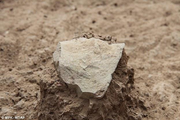 图中是早期人类所使用的石头工具,考古学家认为其历史可追溯至260万年前,但是在肯尼亚发现的石头工具证实这一时间提前70万年,从而改写了早期人类历史。