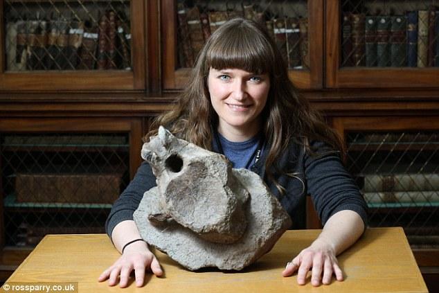 """约克郡自然科学馆长萨拉-金(Sarah King)说:""""我们在约克郡惠比特海岸发现许多远古生物化石,我们对这里发现英国最古老蜥脚类恐龙脊椎骨化石感到非常欣喜!"""""""