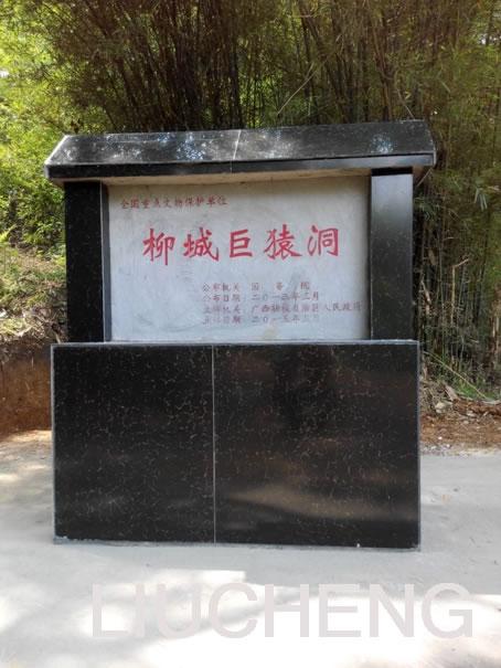 广西柳城巨猿洞保护规划和管理工作取得重要进展
