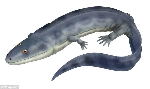 Ossinodus pueri复原图,它是一种接近鳄鱼和鱼类的远古生物