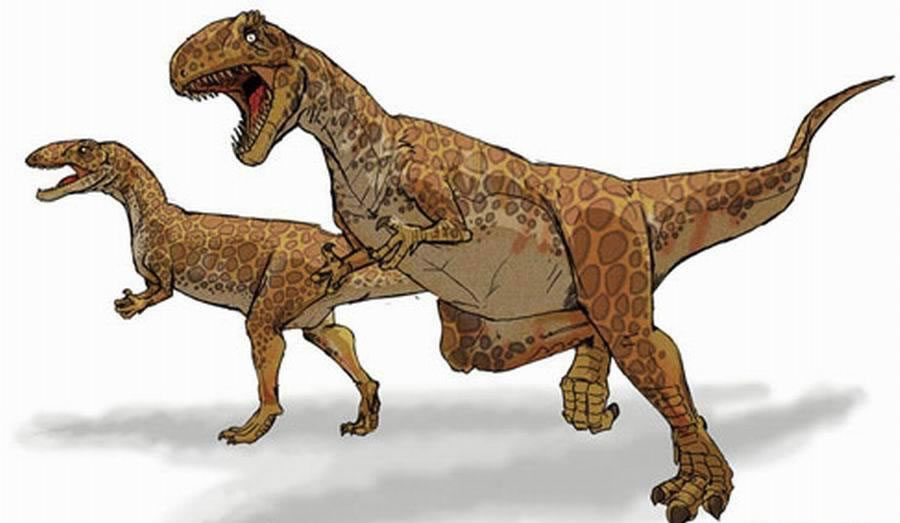 最早的恐龙骨骼化石发现于1677年:最早发现的恐龙骨骼化石是斑龙,是1677年在英国牛津郡采石场挖掘的。