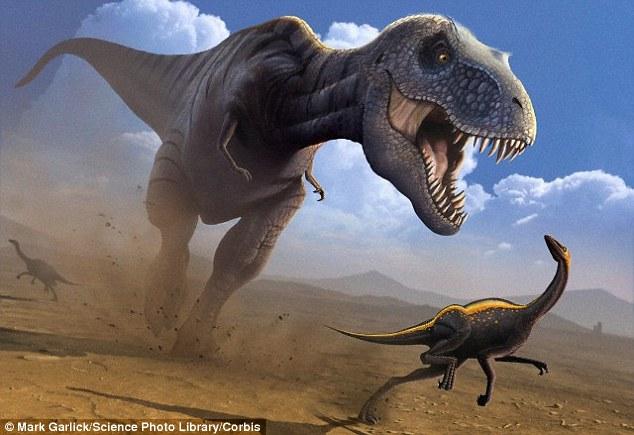 一些恐龙物种寿命可达300年:古生物学家指出,一些体型较大的恐龙寿命为75-300年,然而这一评估是基于它们是冷血动物,如果它们是热血动物,寿命会短一些。例如: