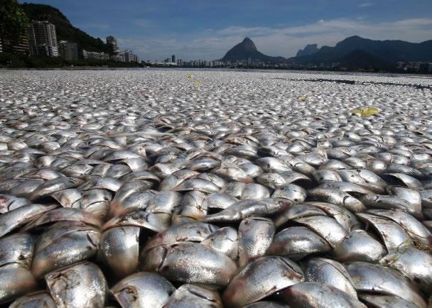 发生于泥盆纪后期的生物灭绝过程,几乎令所有鱼群灭绝。