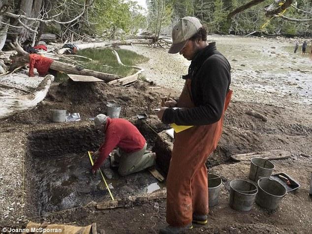 加拿大西海岸卡尔弗特岛发现北美最早古人类脚印化石 距今1.32万年