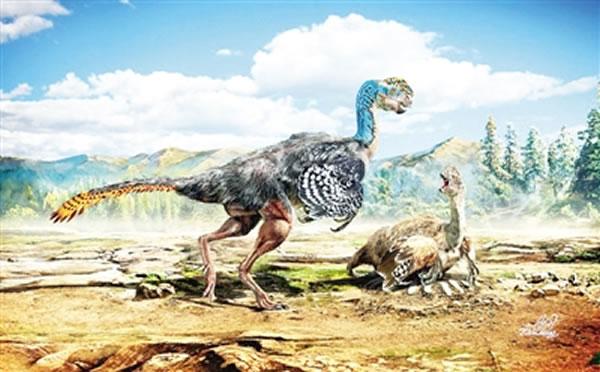 江西赣州晚白垩世地层中发现新的窃蛋龙化石——赣州华南龙
