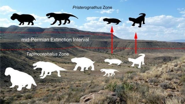 科学家找到证据证实,约2.6亿年前的一场大灭绝导致陆地生物大量灭绝。