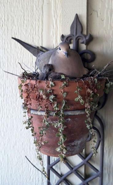 不可思议的鸟巢