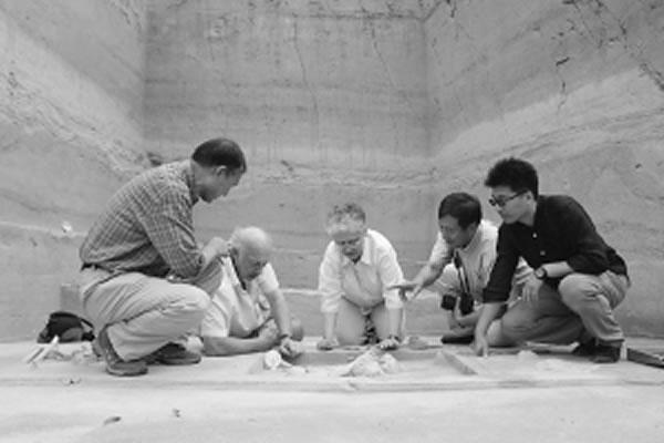 南非学者在发掘现场考察