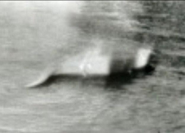 1933年发表在每日快报的尼斯湖水怪照片