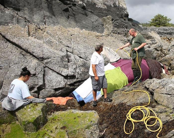市民及守护海湾的团队成员纷纷前往助小虎鲸降温
