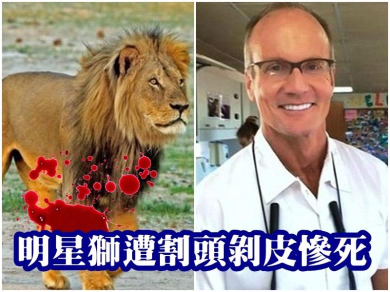 帕尔默(右图)涉嫌非法猎杀明星狮子塞西尔(左图)。