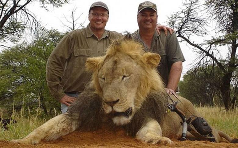 帕尔默(左)猎杀塞西尔激起众怒。图中狮子非塞西尔。
