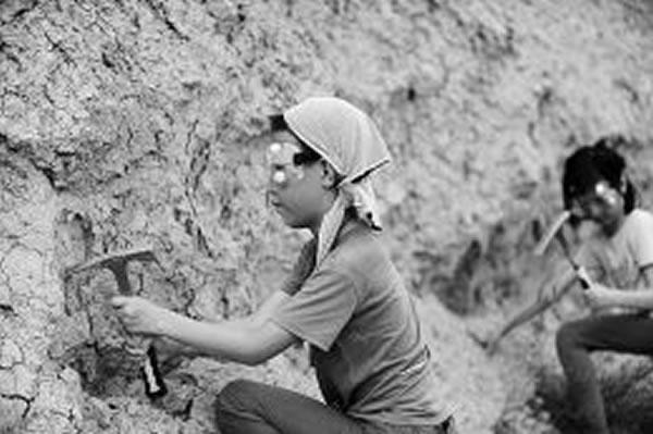 山西晚报化石探索之旅
