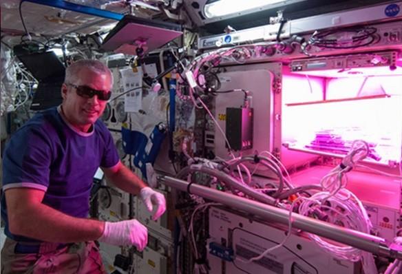 能自己供应食物有助于在太空长期的任务