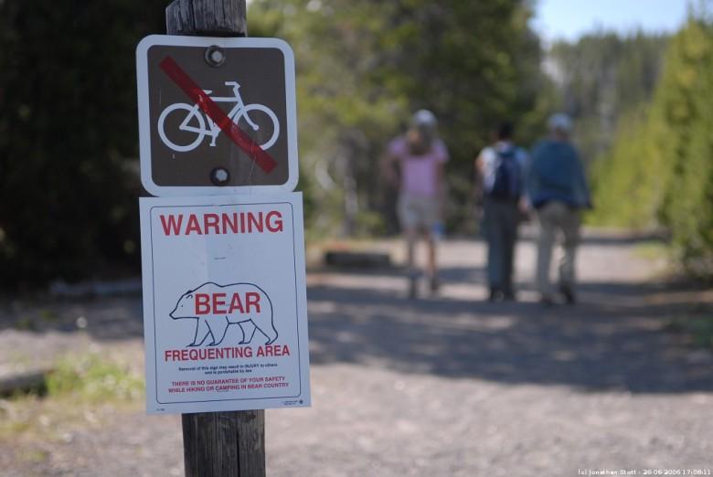 黄石公园一些地方竖立小心熊出没警告