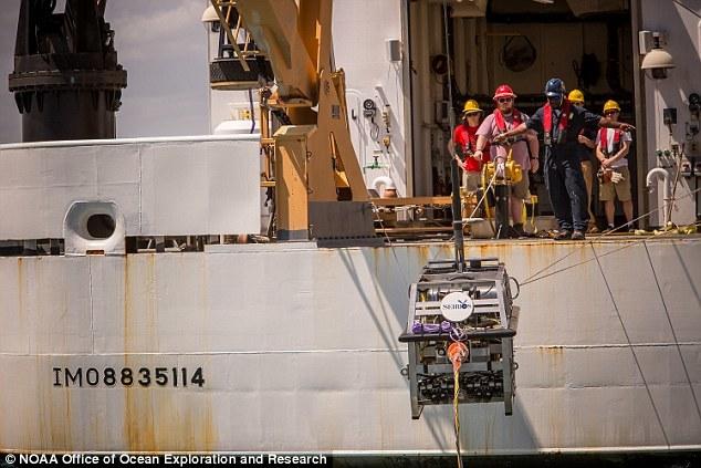 """""""深海发现""""号上配备的相机能够让科学家们实时看到深潜机器人在洋底工作时的情景。到目前为止,""""深海发现""""号下潜的最深处之一位于玛罗暗礁岛东南方,深度达4829米。"""